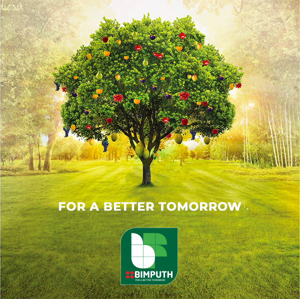 For a Better Tomorrow - Bimputh Finance